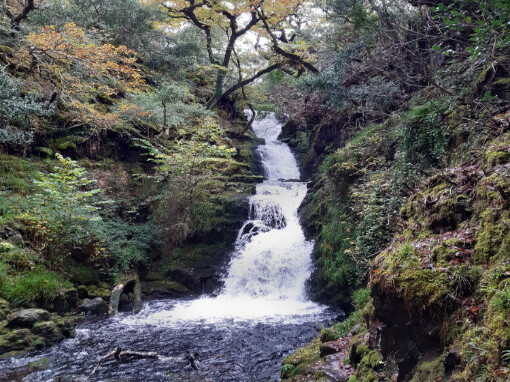 Image is of O'Sullivan's Cascade as it flows down through Tomie's wood into a dark pool